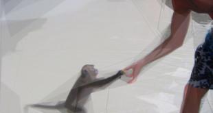 ryan corte with monkey OD